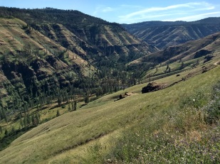 Grande Ronde River Valley
